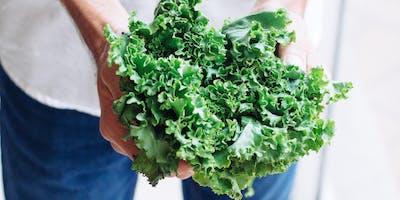 Produce Spotlight: Kale