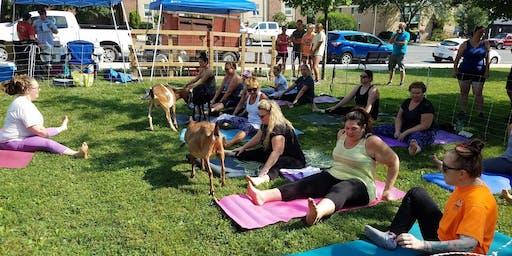 Rocktober Goat Yoga!