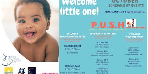 Parent Understanding Safety Habits (P.U.S.H) : Baby Basics Infant Care