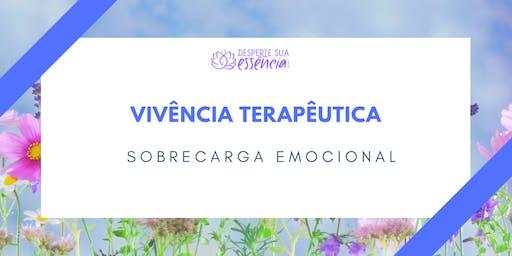 Vivência Terapêutica - Sobrecarga Emocional