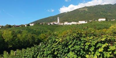 L'anello del Prosecco: passeggiata tra Vigne e Antichi Casolari