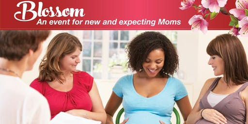 Blossom: An Event for New and Expecting Moms