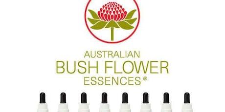 Conferencia: Esencias Florales sistema Bush Australia entradas