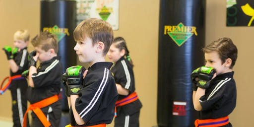 Free Children's Begininer Karate Class