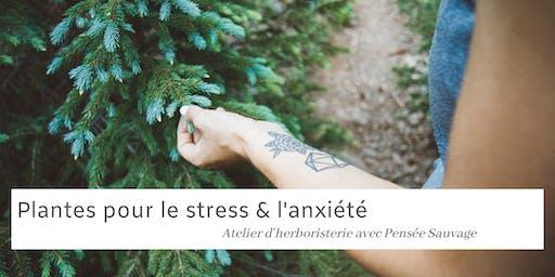 Plantes pour le stress et l'anxiété - Atelier Herboristerie