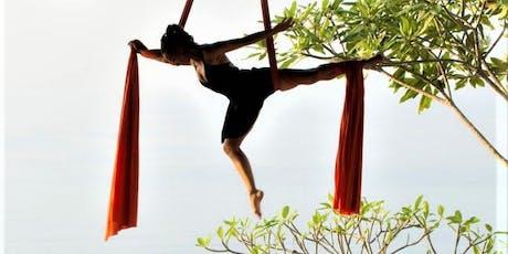 Aerial Silks Workshop with Ana Prada  - St. Croix, Virgin Islands tickets