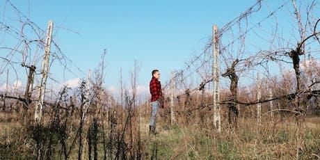 Natural Born Wine presents DRINKS WITH YODA: DANILO MARCUCCI tickets