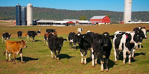 Maryland Winter Dairy Meeting Series