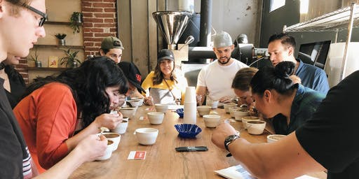 Coffee Cupping