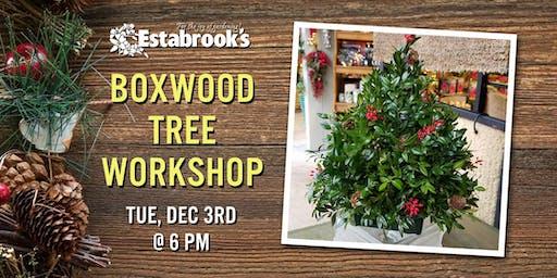 Boxwood Tree Workshop