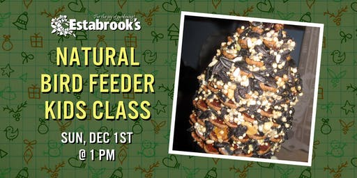 Natural Bird Feeder Kids Class
