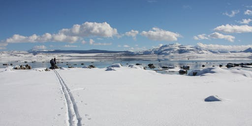 Mono Basin Winter Wander Field Seminar