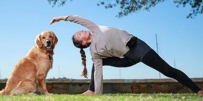 Doggie Yoga 5