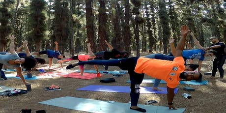 Outdoor Yoga class #10: Vinyasa Yoga - Balance billets