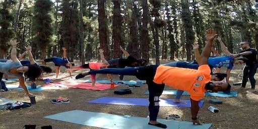 Outdoor Yoga class #10: Vinyasa Yoga - Balance