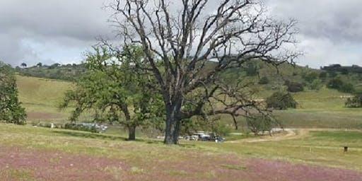 MBE Lake San Antonio Campout