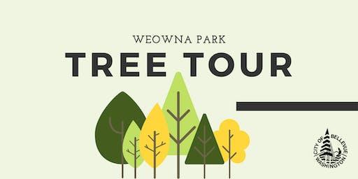 Weowna Park Tree Tour - Nov 9