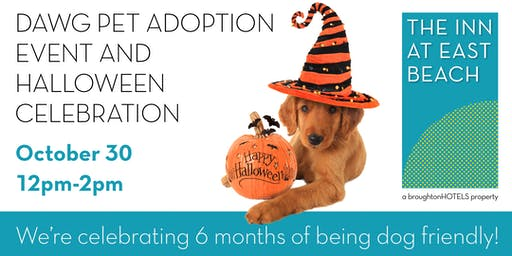 DAWG-on  Pet Adoption and Halloween Celebration