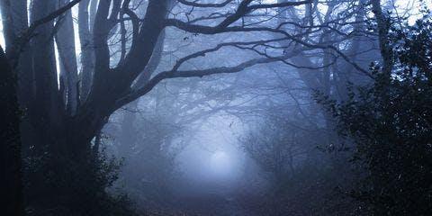 Halloween Seance