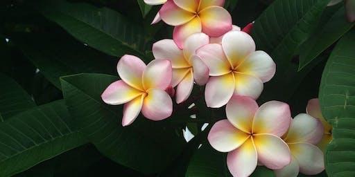 Ancient Hawaiian Energy Healing - Introduction to Huna
