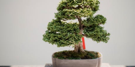 Bonsai workshop by WA Bonsai Society tickets