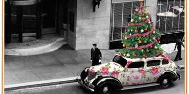 Tea Under the Tree- Holiday Tea at The Sir Francis Drake Hotel