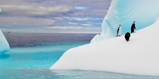 Unforgettable Antarctica with APT event - 6pm, 30th October, Glenelg