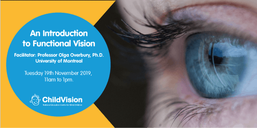 An Introduction to Functional Vision with Dr. Olga Overbury