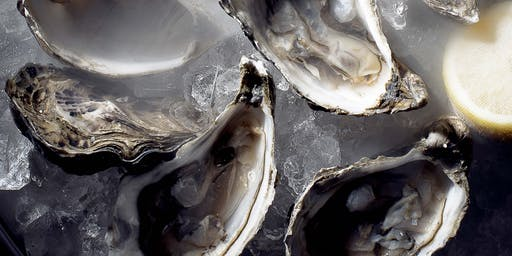 How to: Shuck an Oyster