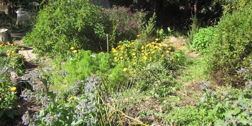 Garden tour & taste - Permaculture theme