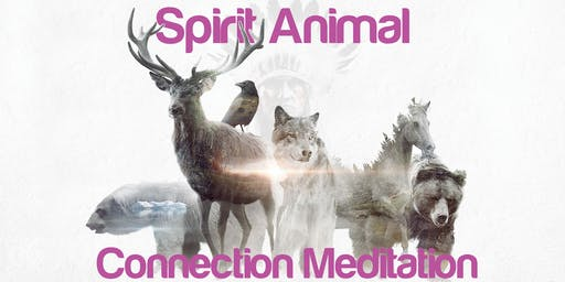 Spirit Animal Connection Meditation: All Welcome: (Hawkins Hall)