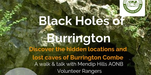 Black Holes of Burrington