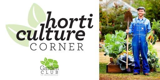 Horticulture Corner: Grow Your Groceries