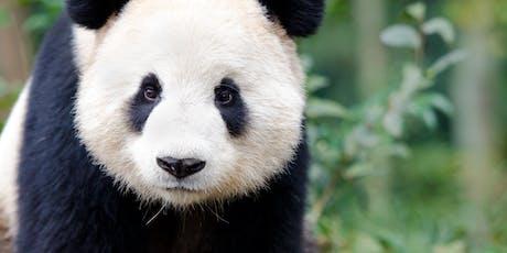 Fujifilm Zoo Photographic Experience tickets