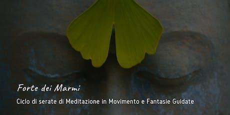 Meditazioni in Movimento biglietti
