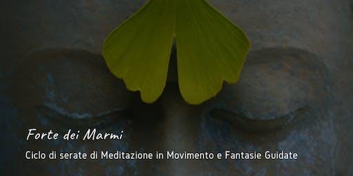 Meditazioni in Movimento