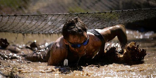 Yorkshire Obstacle Race (YOR)