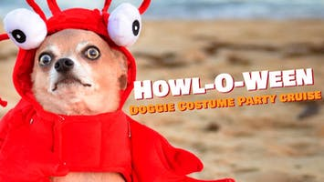 Howl-o-Ween Doggie Costume Party Cruise