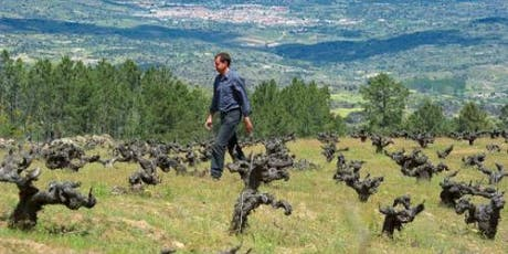 Meet the winemaker: Daniel Ramos - Spanish Wine Tasting tickets