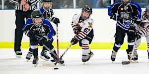 Skater Skills Nov 2 – Novice (2012 2011), Atom (2010 &...