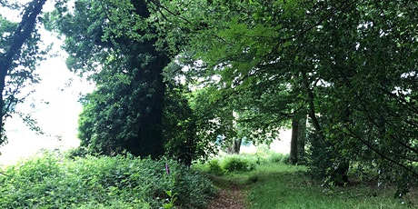 Introduction to Forest Bathing+ tickets