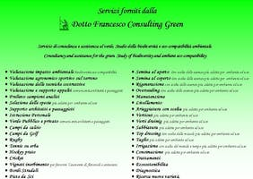 Dotto Francesco Consulting Green