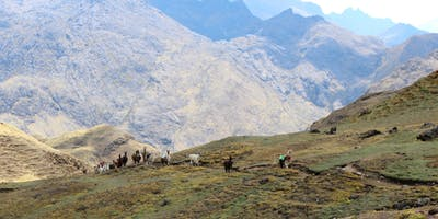 Living Outside the Comfort Zone - Llama Trek in Peru