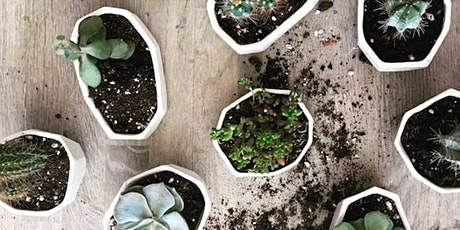 Play with Clay - Porcelain Planters  tickets