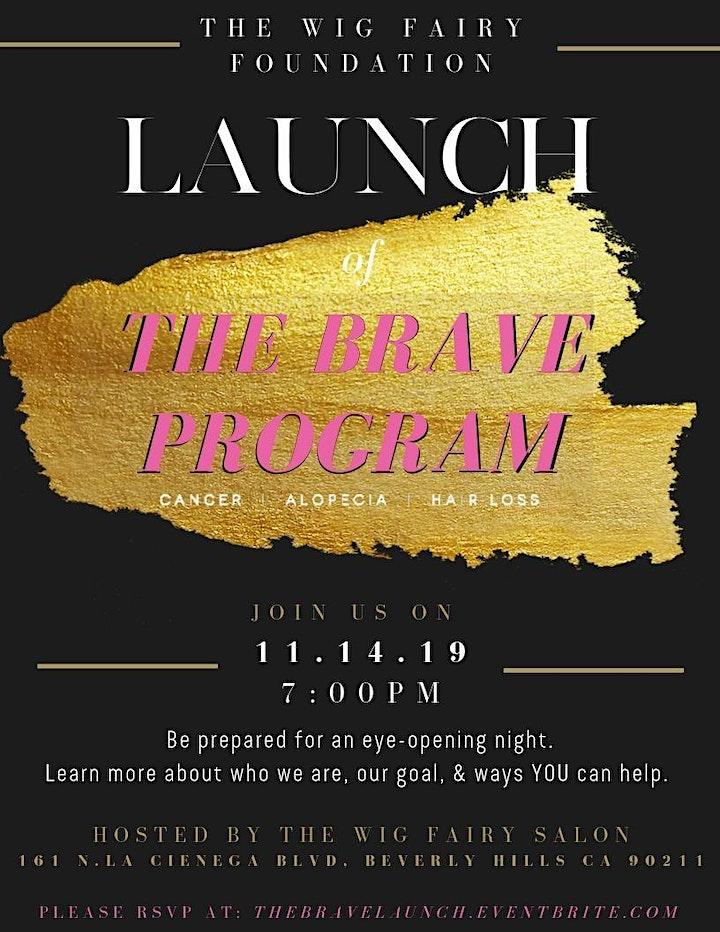The Brave Program Launch image