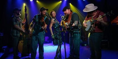 Hillbilly Gypsies Live!
