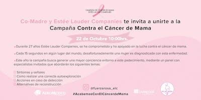 Campaña contra el cáncer de mama por Estée Lauder Companies