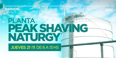 PLANTA PEAK SHAVING NATURGY (General Rodríguez)