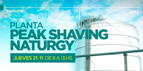 PLANTA PEAK SHAVING NATURGY (General Rodríguez) entradas