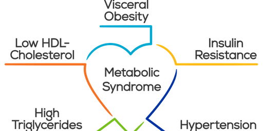 Creating a Healing Environment for Metabolic Syndrome